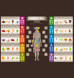 mineral vitamin supplement food icons healthy vector image vector image