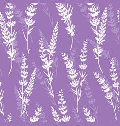 Lavender flowers purple seamless pattern vector