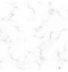 Marble texture white and gray design vector