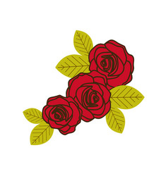 colorful silhouette with set of roses close up vector image vector image