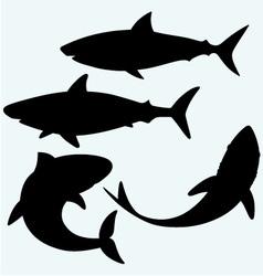 Set shark vector image vector image