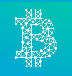 bitcoin crypto currency sign with a net vector image