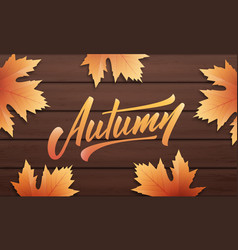 autumn autumn layout design with wooden vector image