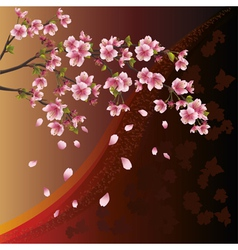 Background with sakura blossom Japanese cherry vector