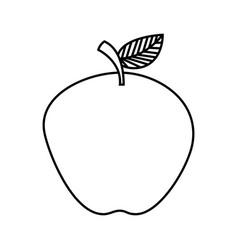 fresh organic apple on white background vector image