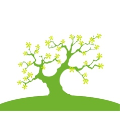 Green Background With Trees And Earth Isolated vector