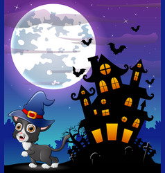 Halloween grey kitten wearing witches hat with sca vector