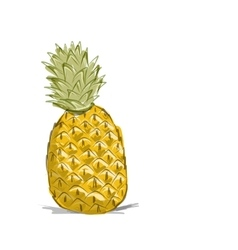 Sketch of pineapple for your design vector image