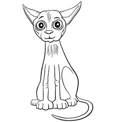 sphynx cat cartoon character coloring book page vector image