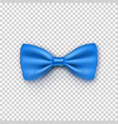 Stylish blue bow tie from satin vector