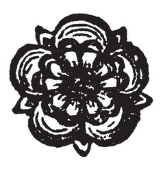 The rose are heraldic charge borne by the seventh vector