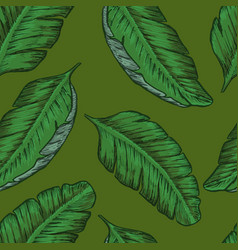tropical seamless background with tropical leaves vector image