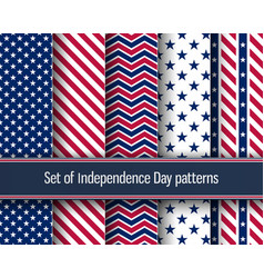 independence day patterns vector image
