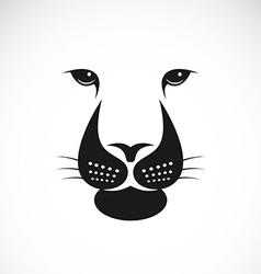 lions face vector image