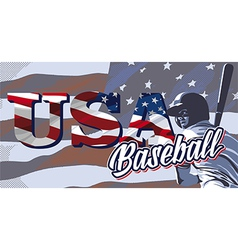BASEBALL FLAG USA vector