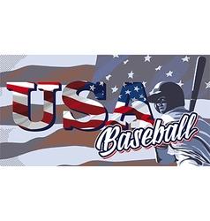 Baseball flag usa vector