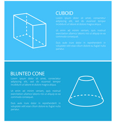 cuboid and blunted cone set vector image