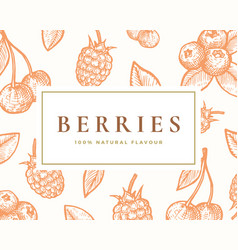 hand drawn berries card abstract vector image