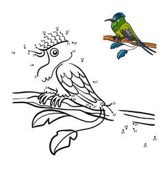 numbers game racket-tail hummingbird vector image