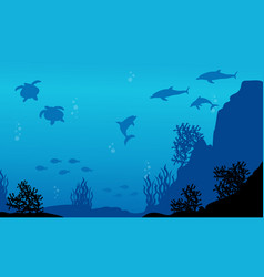 On sea with dolphin fish and turtle landscape vector