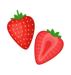 Strawberry whole berry and half vector