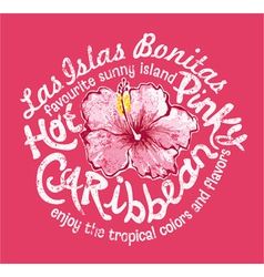 Caribbean island with hibiscus vector image