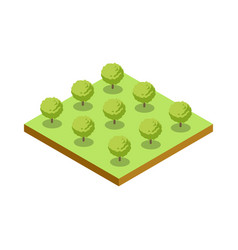 Green bushes isometric 3d icon vector