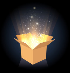 Magic cardboard box with light vector