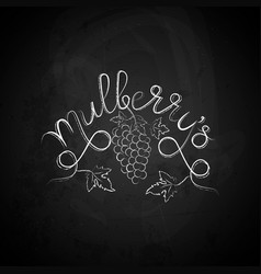 Mulberry sketch vector