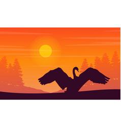 Silhouette of swan on orange background landscape vector