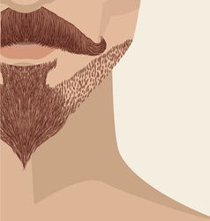 bearded mans face vector image vector image