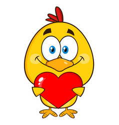 cute yellow chick holding valentine love heart vector image vector image
