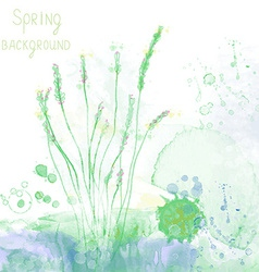 Spring spa background with herbs and grass vector image vector image