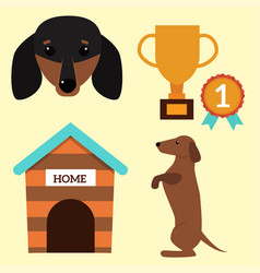 Dachshund dog playing elements vector