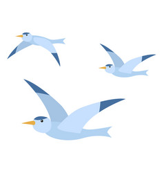 Group wild flying bird seagull card vector