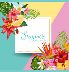 Hello summer tropic design tropical hibiskus vector