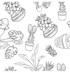 Houseplants pattern of hand drawing vector