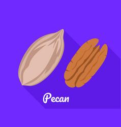 Pecan icon flat style vector