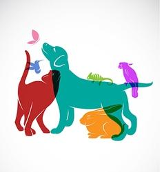 Pets vector