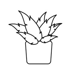 Pot plant decoration botanic natural line vector