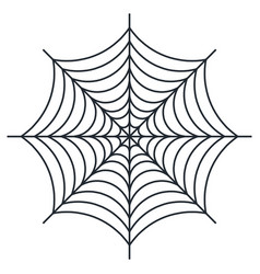 Spider web on white backgroun vector