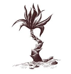 palm sketch wood engraving vector image