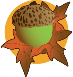 acorn graphic vector image vector image