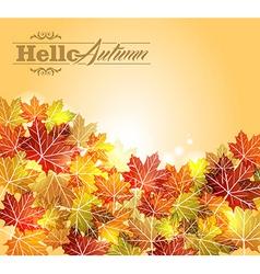 Vintage autumn leaves transparency background vector image