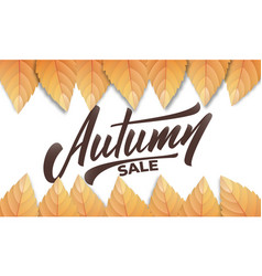 autumn sale autumn background layout with fall vector image