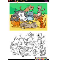 cats and kittens characters group color book vector image