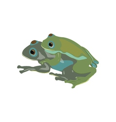 Mating Frogs vector