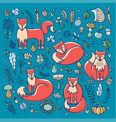Set cute foxes and floral elements vector