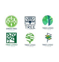 tree logo templates collection abstract organic vector image