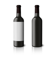Two blank black realistic bottles for red wine vector image